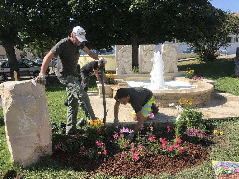 Des fleurs pour les abeilles : la municipalité se mobilise !