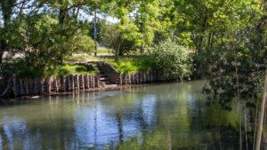 La rivière Sorgue, une exception fragile en Provence qui nécessite l'implication de chacun pour mieux la protéger