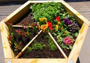 Un projet éco-école pour l'école maternelle Jacques Prévert