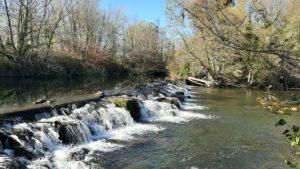 Les travaux de création de passes à poissons sur les seuils du Moulin des Toiles et du Moulin Vieux ont débuté
