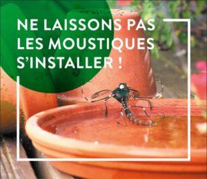 Comment lutter contre les moustiques ?